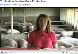 hog farm video