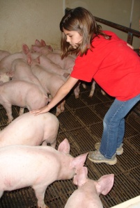 Rachelle checking nursery pigs when she was younger.