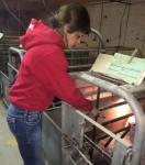 Rachelle prefers checking the hog water on cold winter mornings, it's a lot warmer inside the heated hog barns!